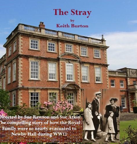 The Strayslideshow